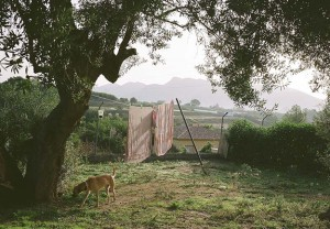 FourAndSons_SpanishHounds_Feature_01