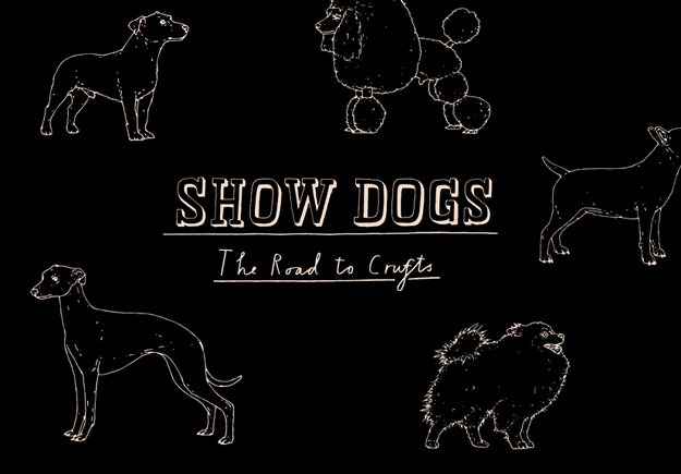 Four&Sons_Showdogs_Feature