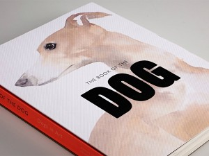 F&S_The Book Of Dog