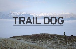 Video_TrailDog